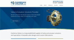 Preview of cambrianvalves.co.uk